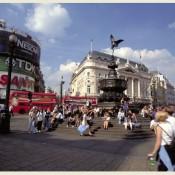 סלפי עם סלבס, בלונדון